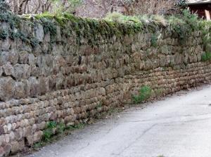 Arlebosc wall