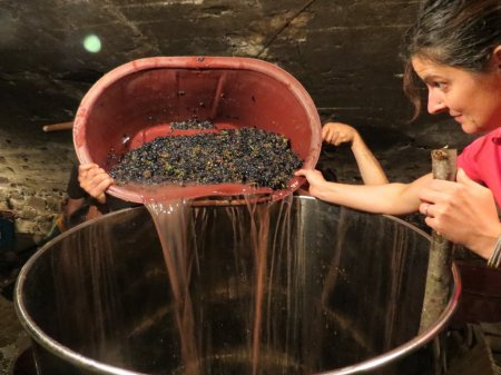 Into the vat