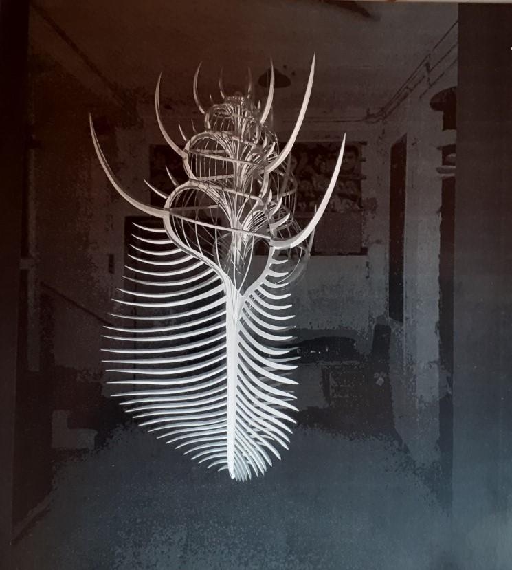 Venus Comb paper sculpture by Suhail